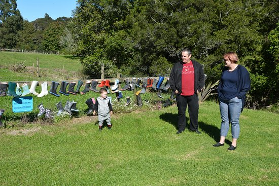 Whakatane, New Zealand: Gumboot Fence