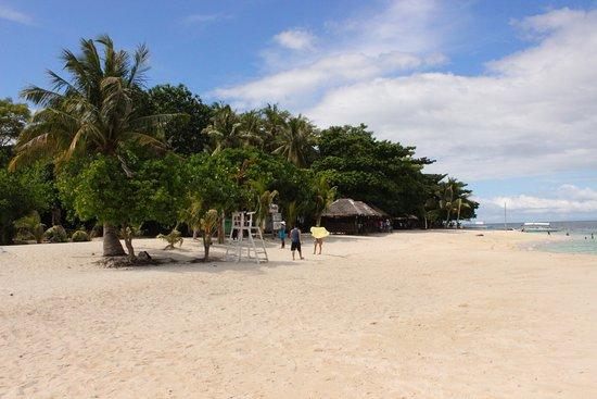 Canigao Island: White sands of Canigao