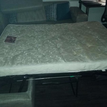 Element Las Vegas Summerlin: Mattress on sofa bed