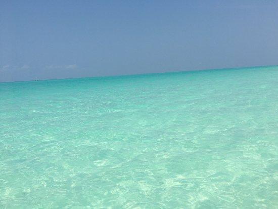 Haa Alif Atoll : photo4.jpg