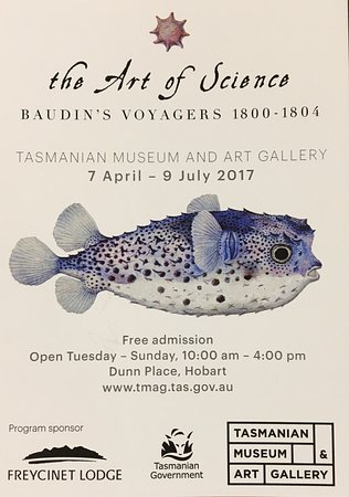 Tasmanian Museum and Art Gallery: photo0.jpg