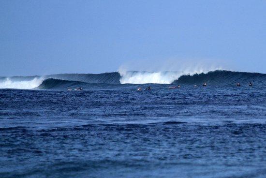 Thulusdhoo Island: Chickens surf break in Maldives