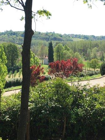 Montafia, Italia: photo1.jpg