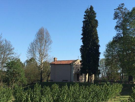 Montafia, Italia: photo2.jpg
