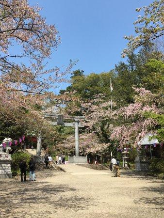Katori, Japan: photo1.jpg