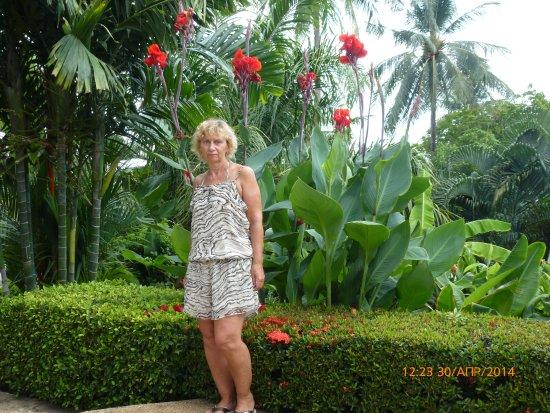 Best Western Phuket Ocean Resort صورة فوتوغرافية