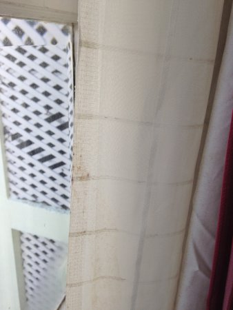 The Elgin, Darjeeling: Filthy Curtains