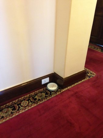 The Elgin, Darjeeling: Plates left outside our room for three days