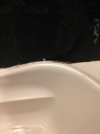The Elgin, Darjeeling: Mould growing around bathtub