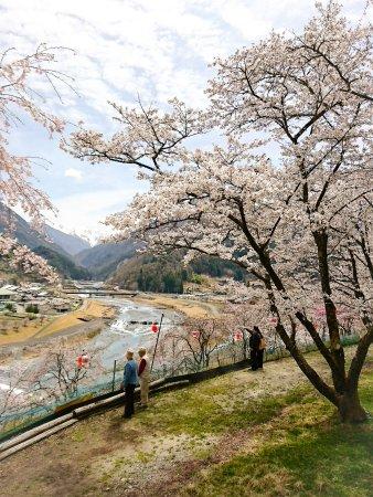 Oshika-mura Hotels