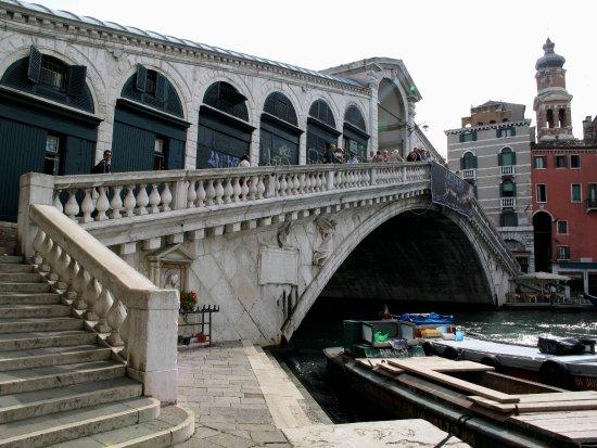 Stella Alpina Edelweiss: Venezia
