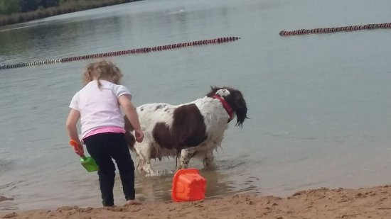 Bosworth Water Park: having fun on the beach.
