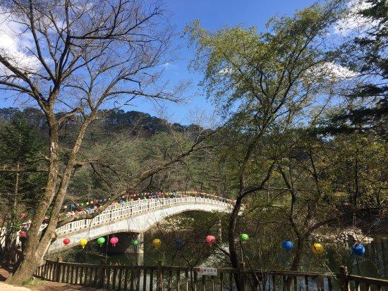 Pyeongchang-gun
