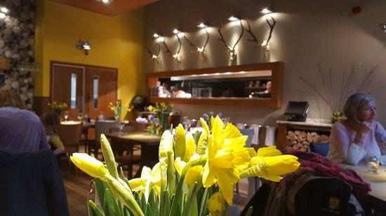 Mortons Kitchen Bar And Deli Shirley Menu Prices Restaurant
