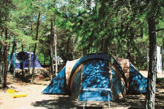 Méolans-Revel, France : Emplacement de camping