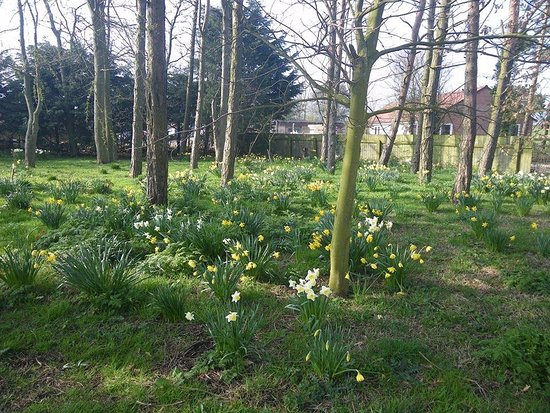 Cayton, UK: Spring time at the Stained Glass Centre