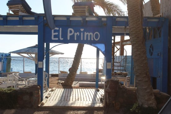El Primo Hotel Dahab: photo4.jpg