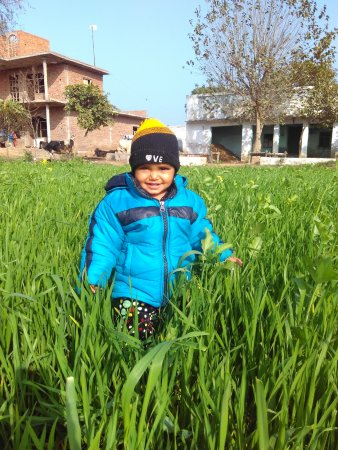 Sohna, India: Tolni at Home