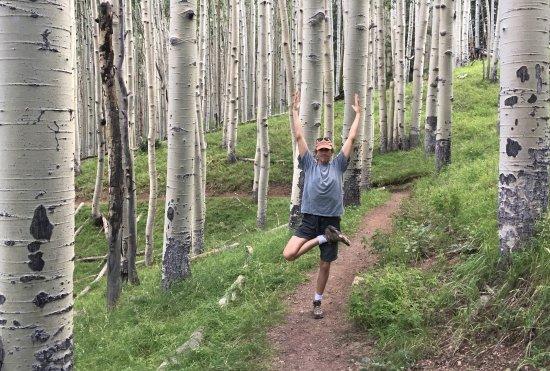 Τέμπε, Αριζόνα: Inner Basin Flagstaff Arizona Arizona Hiking Yoga