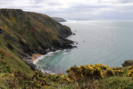 View to the east along the cliffs beyond Hope Cove