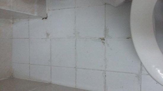 Gulf Gate Hotel: Room and bathroom