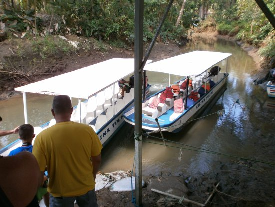 Tarcoles, Costa Rica: Took a boat ride to see the monkeys.