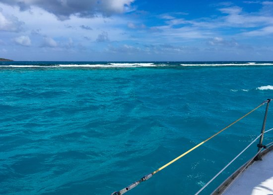 Bilinda Charters: carefully approaching the reef to snorkel