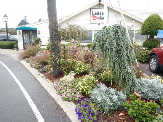 Lobster Hut: Nice curb appeal