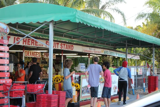 Florida City, FL: Robert is Here - Guanabana smoothies - Fresh Tropical Fruit Lunch