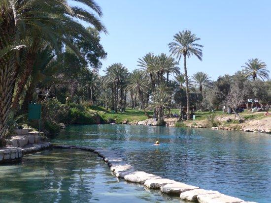 Бейт-Шеан, Израиль: Children's pool (in front)