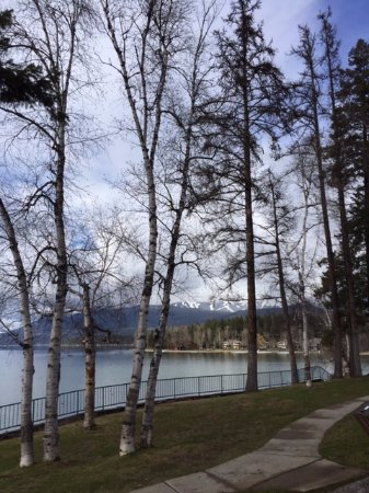 Whitefish, MT: Through the trees