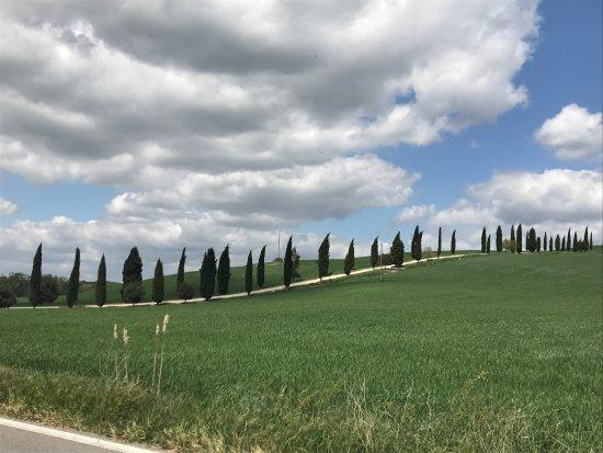 Asciano, Italië: photo5.jpg