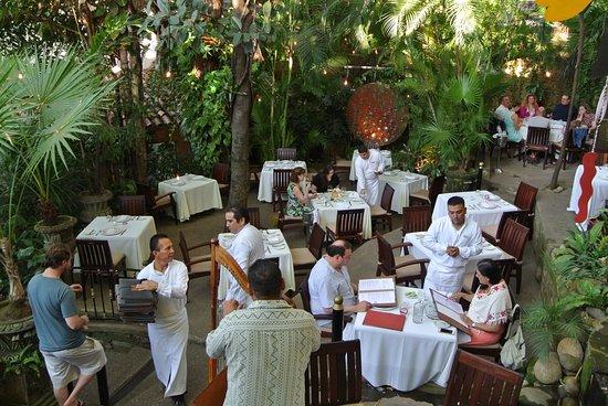 Café des Artistes: Early evening in the garden