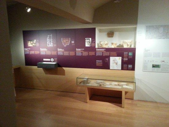 Historisches Museum der Stadt Barcelona (Museu d'Historia de la Ciutat): Underground floor Roman life exhibition.