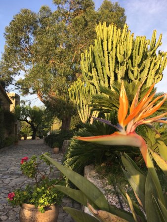 Moscari, Spanien: The beautiful garden