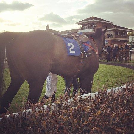Stratford-upon-Avon Racecourse: photo5.jpg
