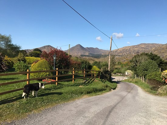 Magannagan Farm B&B: photo1.jpg