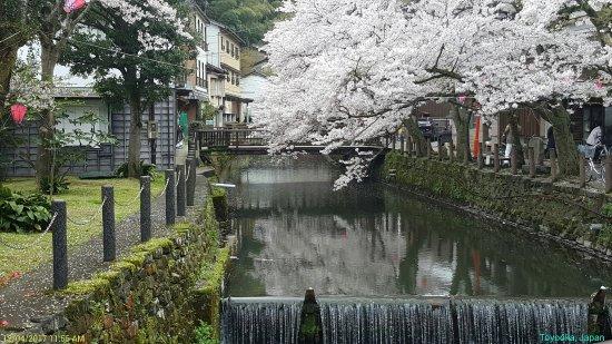 Toyooka Photo