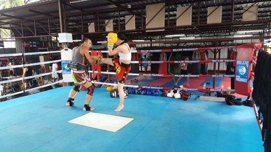 Kobra Muay Thai Boxing Stadium