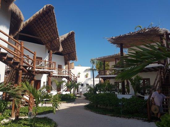20170411 161011 picture of villas hm palapas for Villas hm paraiso del mar holbox tripadvisor