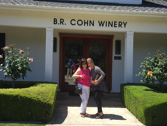 Napa Valley, CA: B.R. Cohn winery, one of our favorites. Friendly staff.