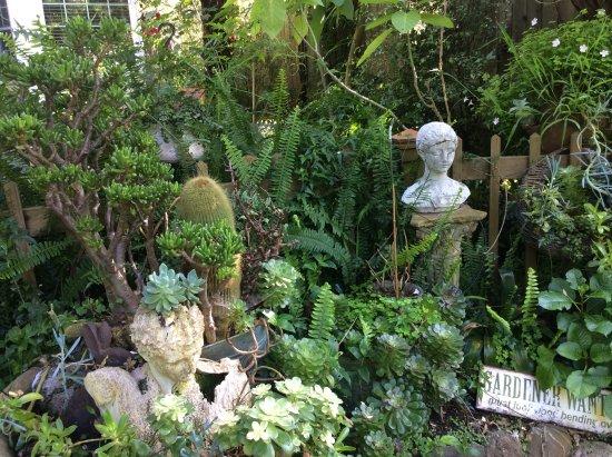 Union Street Inn: Back garden