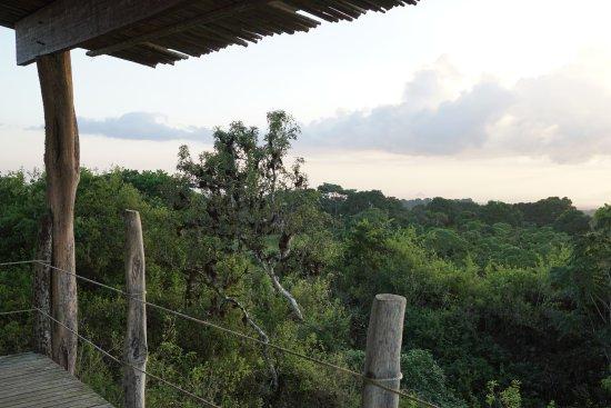 Galapagos Safari Camp: Sunset from the viewing platform