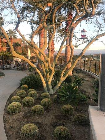 Rancho Mirage, Καλιφόρνια: photo8.jpg