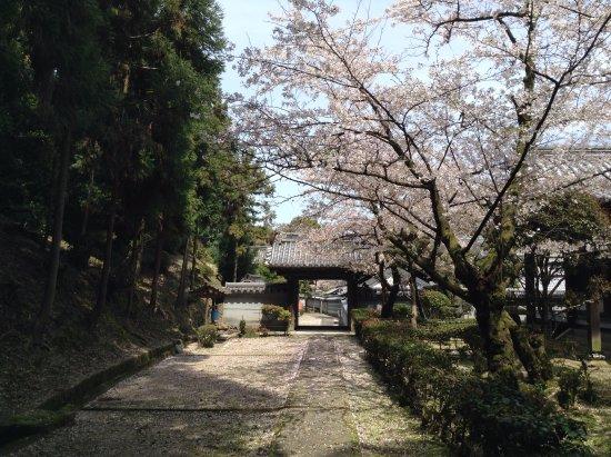 Kashiwara, Japan: 【安福寺】(あんぷくじ)