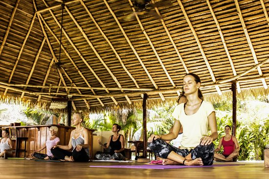 Playa Potrero, Costa Rica: Sattva yoga is asanas, breath work and meditation