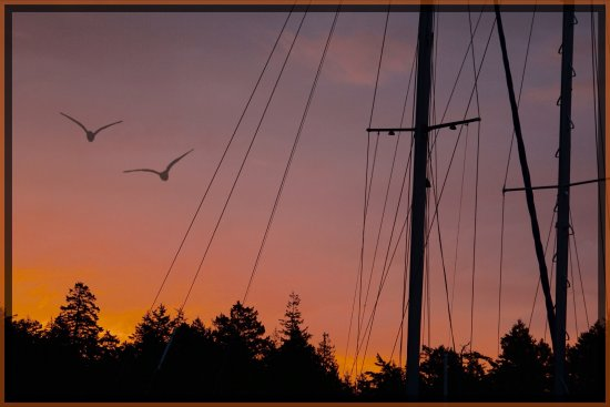 Gabriola Island, Canada: Evening on our docks.