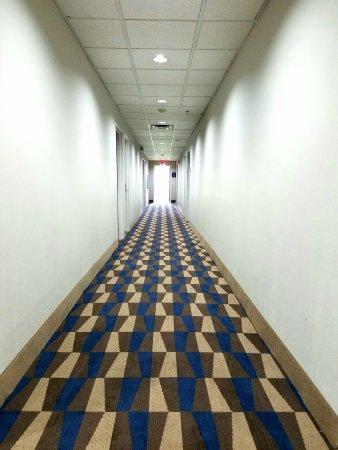 London, KY: New Lobby Carpet