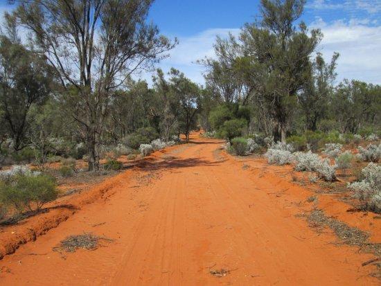 Waikerie, Austrália: All dirt roads