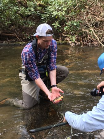 Cashiers, NC: This brown trout is about 4 years old. Prettiest catch of the day!